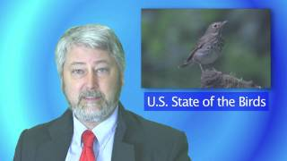 BNN: State of the Birds Finds Species Imperiled