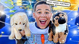 Magic Puppy Swimming Rescue Mission | FamousTubeKIDS