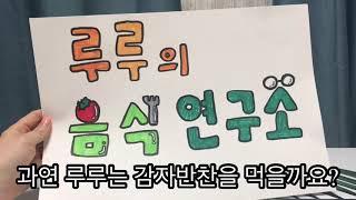 """루루 """"감자반찬"""" 인증영상"""