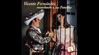 Vicente Fernandez Perdida