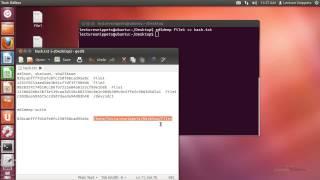 Ubuntu 12.04 Forensics - md5deep, sha1deep, sha256deep, tigerdeep, and whirlpooldeep