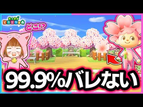 全身ピンク色で桜に紛れてかくれんぼしたら絶対バレない説www【あつ森】【さくら家具/かくれんぼ】