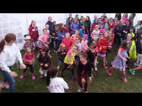 Flash Mob Dance at Durrow Scarecrow Festival 2014