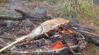 ВЫЖИВАНИЕ Рыбалка на ОКЕ в затоне и На ПОПЛАВОК с ЛОДКИ на ЖИВЦА ВЕСЁЛЫЙ ДЕД на КРУТОЙ ТАЧКЕ
