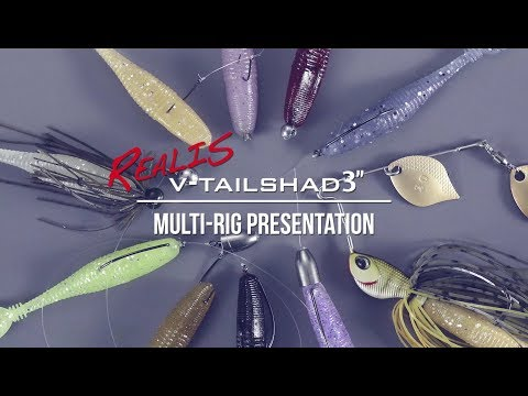 Realis V-Tail Shad: Multi-Rig Presentation