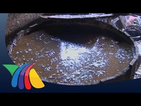 Aguardiente, bebida de la Huasteca veracruzana | Noticias de Veracruz