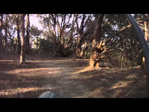 Big Cedar Wilderness Trail (BCWT) - Ranger Loop