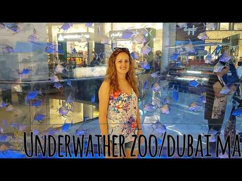 Honeymoon Dubai june 2016 -Shark walker+ Burj Khalifa+Desert Safari+ atlantis waterpark...