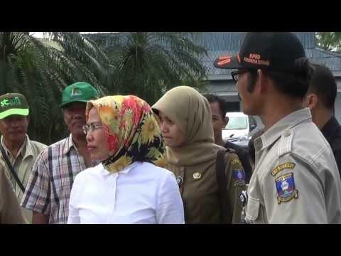 Ratu Tatu Chasanah Memantau Bendung Pamarayan, Sungai Ciujung, di Kupaten Serang
