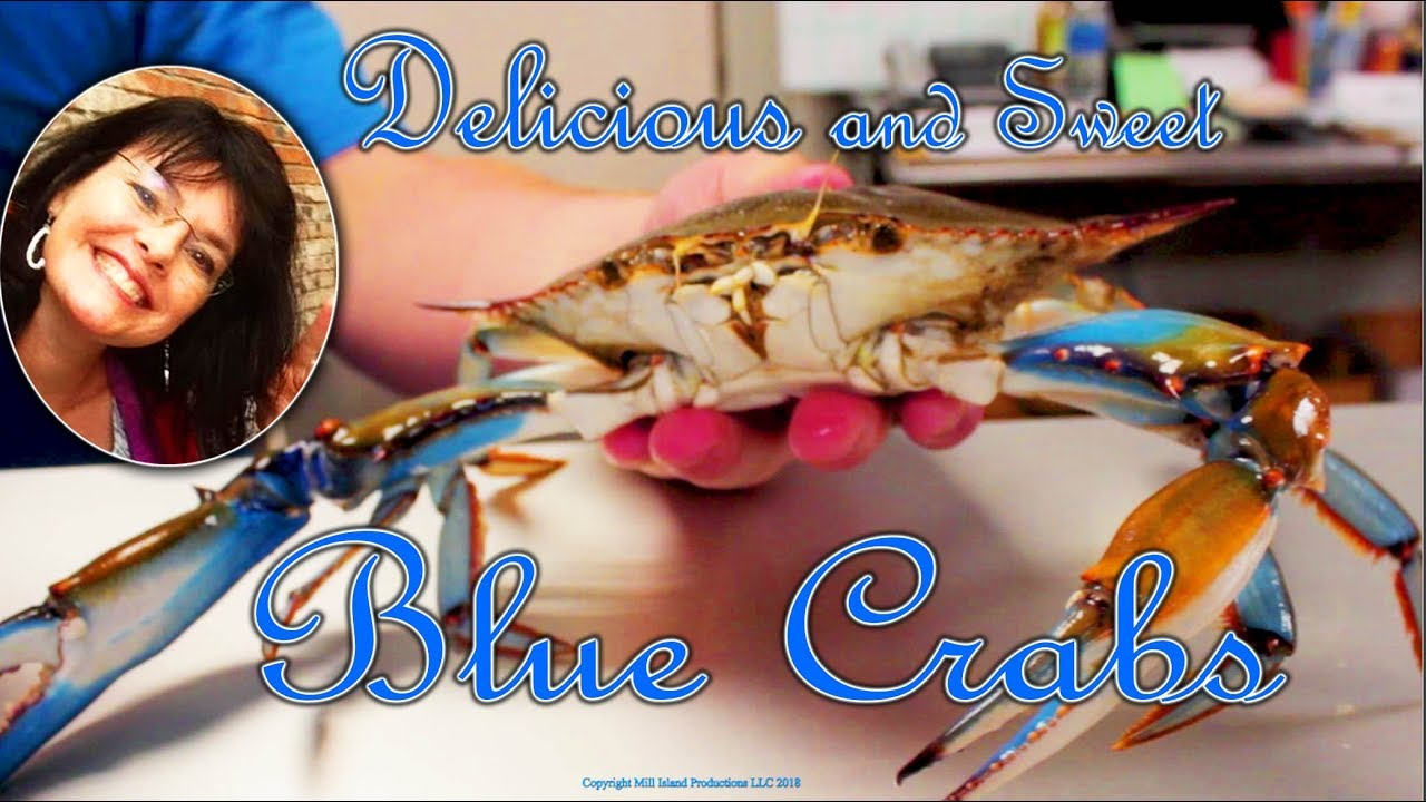 Blue crab boil louisiana home style youtube