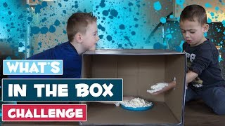 * WHAT'S IN THE BOX CHALLENGE * - DE BAKKERTJES #29