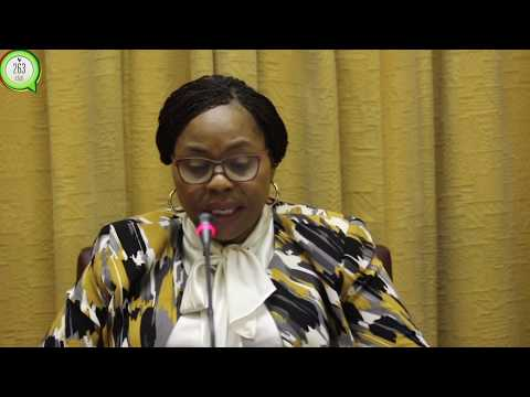 Dualisation of Harare - Masvingo - Beitbrigde highway will be done in two phases: Government