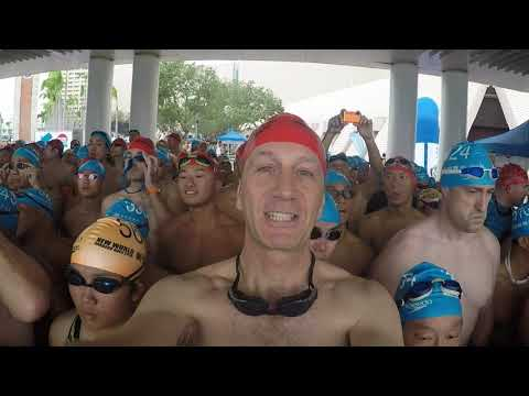 2018 Hong Kong Cross Harbour Swim with Camille Cheng and Yvette Kong New World Harbour swim 2018
