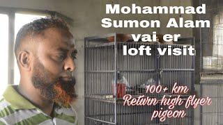 Sumon Mahamud Pigeons Loft Part 2 /by PigeonsMarket Net 23