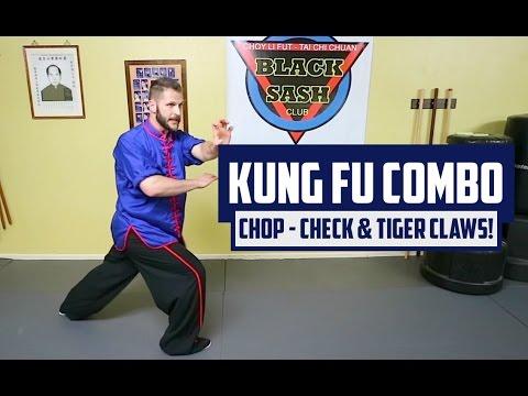 Kung Fu Combo - Chop - Check & Tiger Claws!