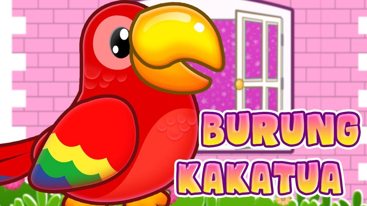 Burung Kakak Tua Versi Kartun Upin Ipin Lucuuuuuu Youtube