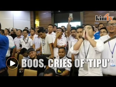 Boos, cries of 'tipu' ring out as new PKR Youth chief announced