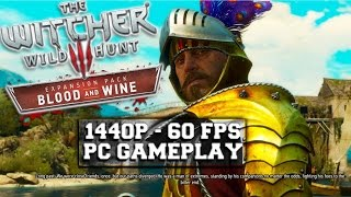 The Witcher 3 Blood and Wine  -  1440p 60fps PC Gameplay