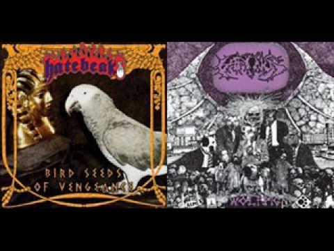 Hatebeak - Bird Seeds Of Vengeance