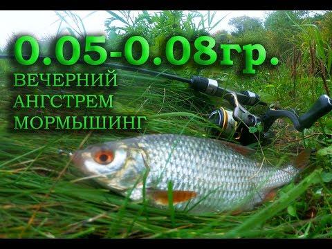 ВЕЧЕРНИЙ ÅНГСТРЕМ МОРМЫШИНГ 0.05-0.08гр.