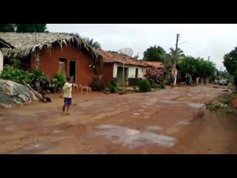 Sucupira do Riachão Maranhão fonte: i.ytimg.com