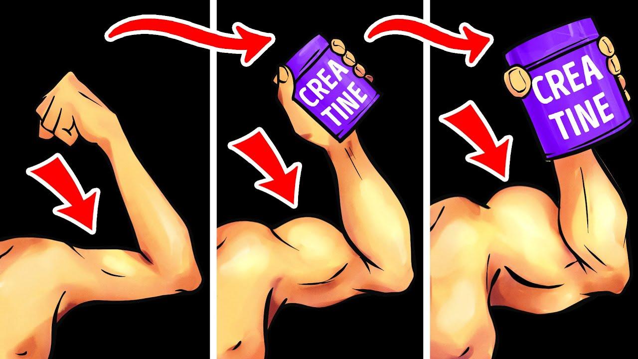١١ تمرين + الكرياتين لنمو العضلات (خطة متكاملة)