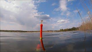 Рыбалка на карася Пружина и поплавок My fiching