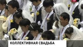 Свадьба 400 тысяч пар в Южной Корее