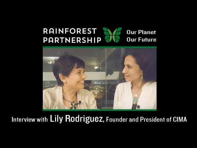 Interview with Lily Rodriguez, Founder and President of CIMA