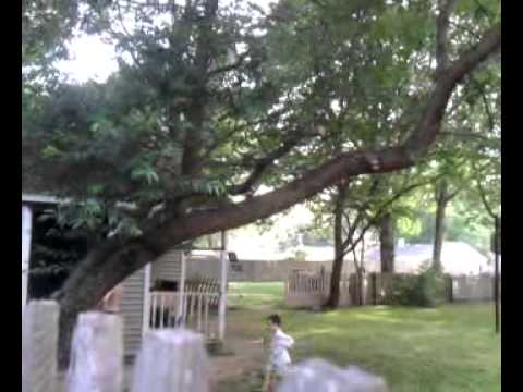 These are the residents of 897 Udall Road, West Islip, New York, 11795 (Part 2 of 3)