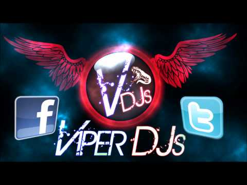 Bhangra Mix Part 3 | Viper DJs