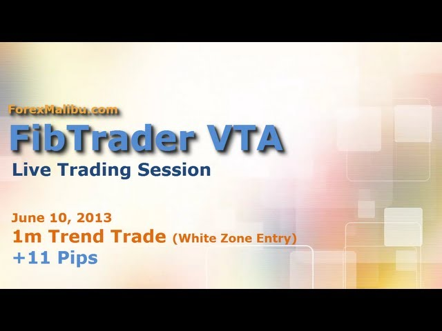 FibTrader (FibMatrix) VTA Forex Day Trading Software – LIVE TRADE!!