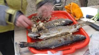 Радужная форель на углях(Рецепт приготовления радужной форели на углях. http://fishingfamily.com.ua/?p=704., 2015-03-28T18:50:36.000Z)
