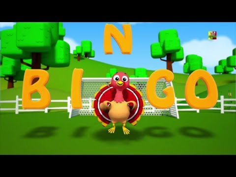 Bingo el perro   Canción de niños y bebés   Música para niños   Bingo Kids Song   3D Preschool Song