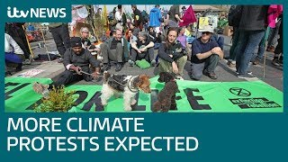 Central London climate protests continue as more disruption promised | ITV News