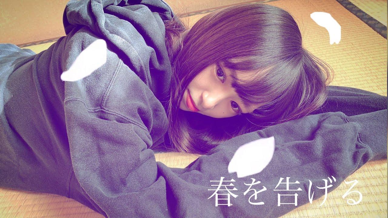 半 を て 深夜 6 夢 見 た の 東京 畳