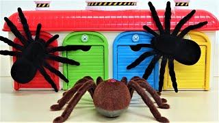 トーマス、ディズニーカーズ、ちびっこバスタヨガレージ、クモの怪物の物語