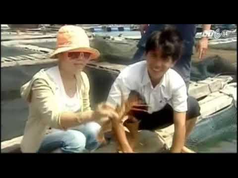 VTC14_Biển đảo Việt Nam_Bình Thuận có đảo Phú Qúy_30.01.2013