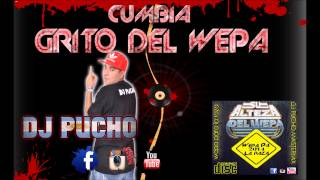 CUMBIA GRITO DEL WEPA 2015 - PRODUCER DJ PUCHO MASTERMIX