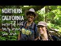 [RV Life & Travel] Ep. 98 Jedediah Redwoods || Crescent City, CA || Beach, Brewery & Boy Scout Tree