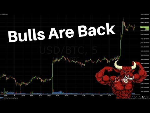 The Bulls Are Back in Town – Crypto Jumps by $30B