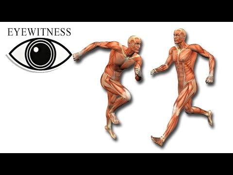 eyewitness human machine