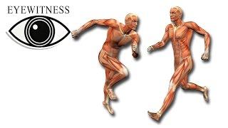 EYEWITNESS | Human Machine