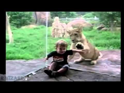 Зоопарк - государственный зоологический парк Удмуртии