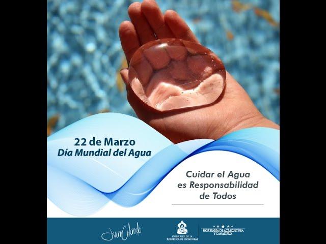 SAG Mensaje Día Mundial del Agua