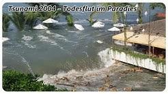 Tsunami 2004 - Todesflut im Paradies [1/2][DOKU][HD]