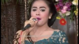 Video Chandra & Ayuswara ★ Pengin Pacaran ★ Revansa Semo 2016 download MP3, 3GP, MP4, WEBM, AVI, FLV Maret 2018