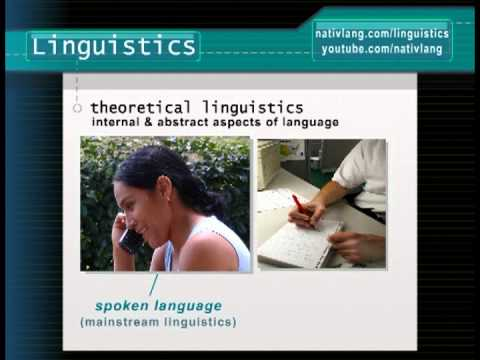 What is linguistics? How do linguists study language? -- Linguistics 101