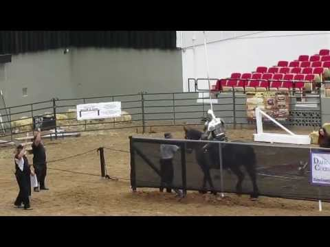 Full Metal Jousting  Final Preliminary Round 10 of 10