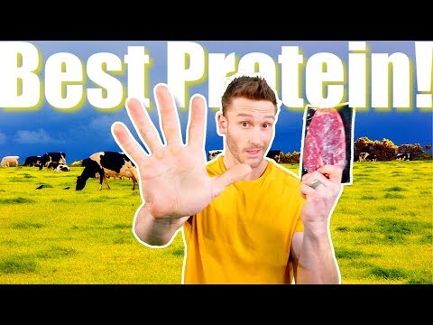 Top 5 Sources Of Protein On A Ketogenic Diet